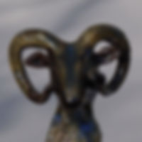 Mouflon H23cmL6.5cmP11cm (4).JPG