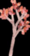 Árvore_1.png