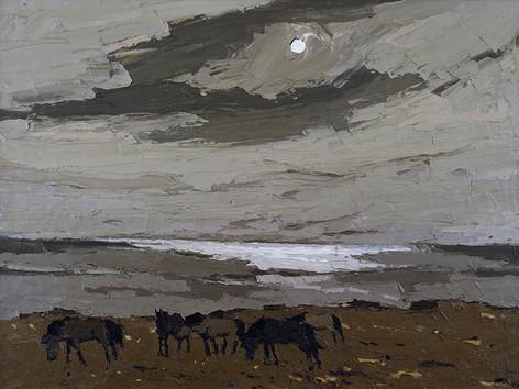 Ponies, Llanfair-yng Nghornwy, 1974