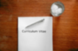 Icon of CV pen & paperweight.jpg