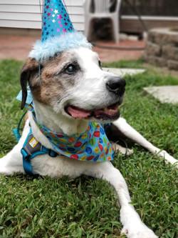 Benny 16th Birthday