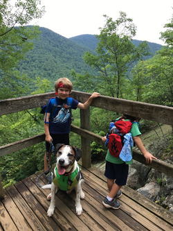 walter and benny hike