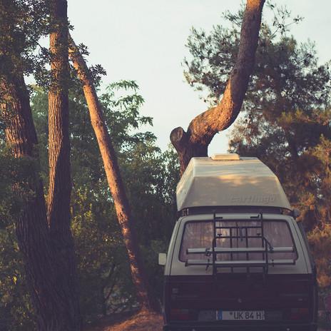 pinewood vanlife