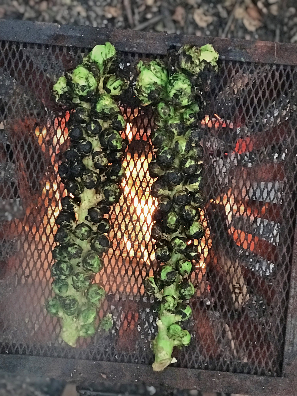Wood grilled Brussels Sprouts over the fire.