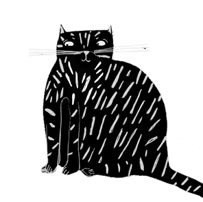 black cat alone
