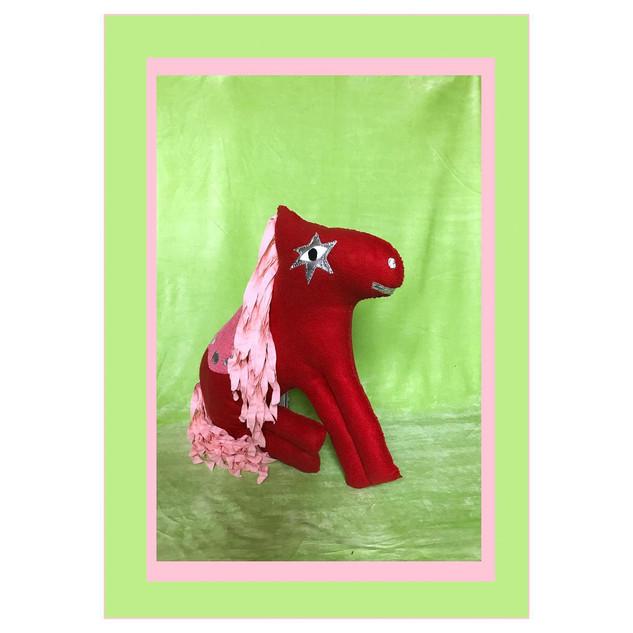 Clothes Horse [School Picture]