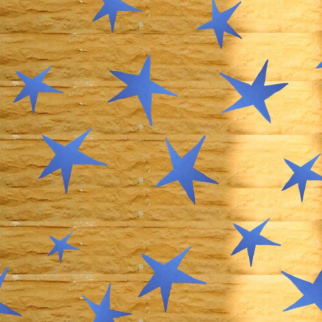 star bricks