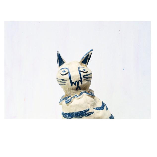 Mackerel Cat