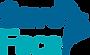 Save Face Logo.png