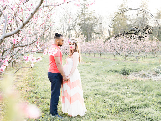 Peach Orchard Maternity Session