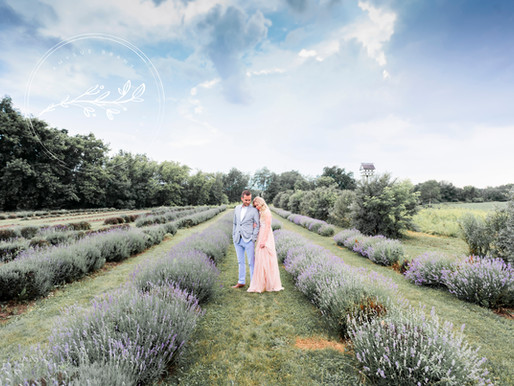 Love in the Lavender