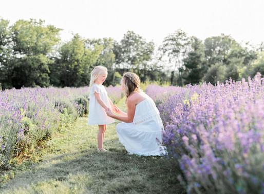 Lavender Farm Lovelies