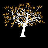 Logo fond noir.jpg