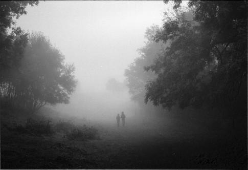 Figures walking in the mist