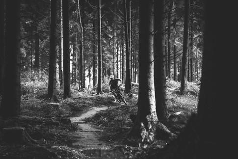 BMX rider in the woods