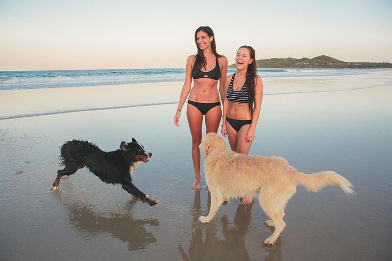 dog-walking-belongil-beach-byron-bay-courtesy-destination-nsw