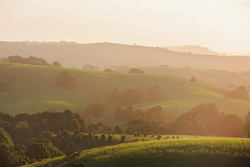 hinterland-view-byron-bay-aloha-courtesy-destination-nsw