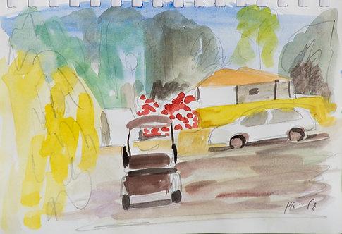 Watercolour 8548