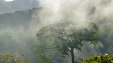 Why Retreat in Costa Rica?