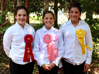 The Kids Celebrate 4H Success at The Eaton County Fair!