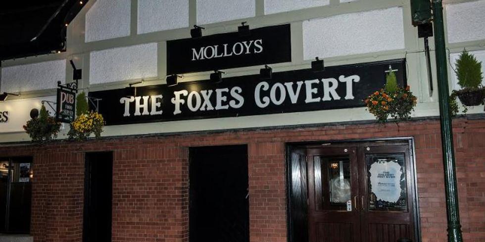 The Finns - Live at Molloys