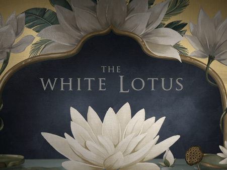 The White Lotus HBO Series Review - How Vacations Never Go as Planned