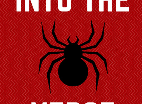 Into The Spiderverse: All the Spider-Man Movie Franchises till date