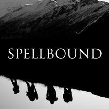 SPELLBOUND (5', New Zealand, 2020)