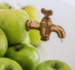 apple-liquid-plant-fruit-sweet-summer-840237-pxhere_edited.jpg