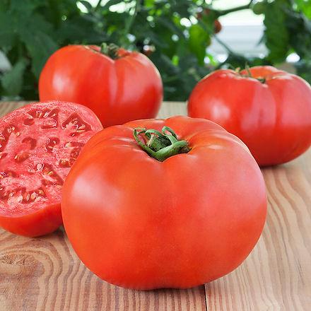 debut-tomato.jpg