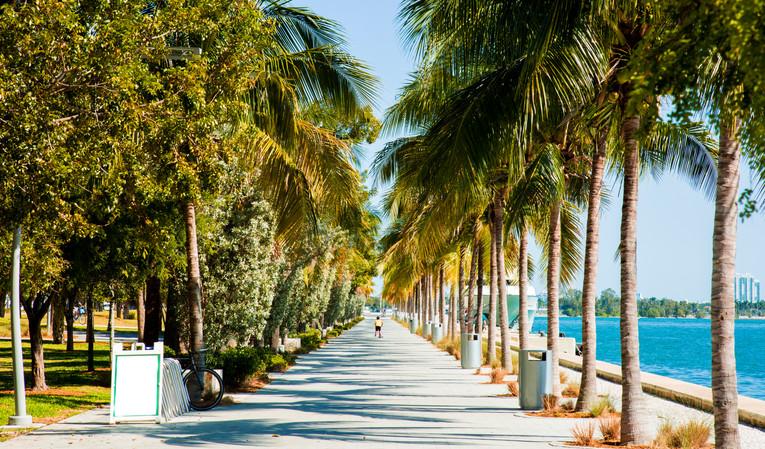 Miami-2.jpg
