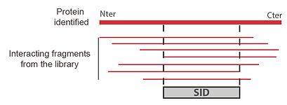 interaciton.PNG