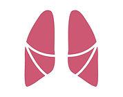 肺-01.jpg
