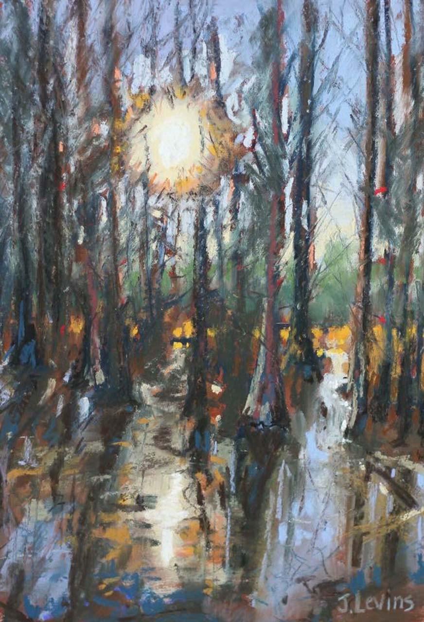 Jennifer Levins_Swamp Mysteries_$300