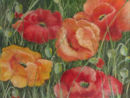 Ildiko Andrews, Poppies, Oil, 16 x 20