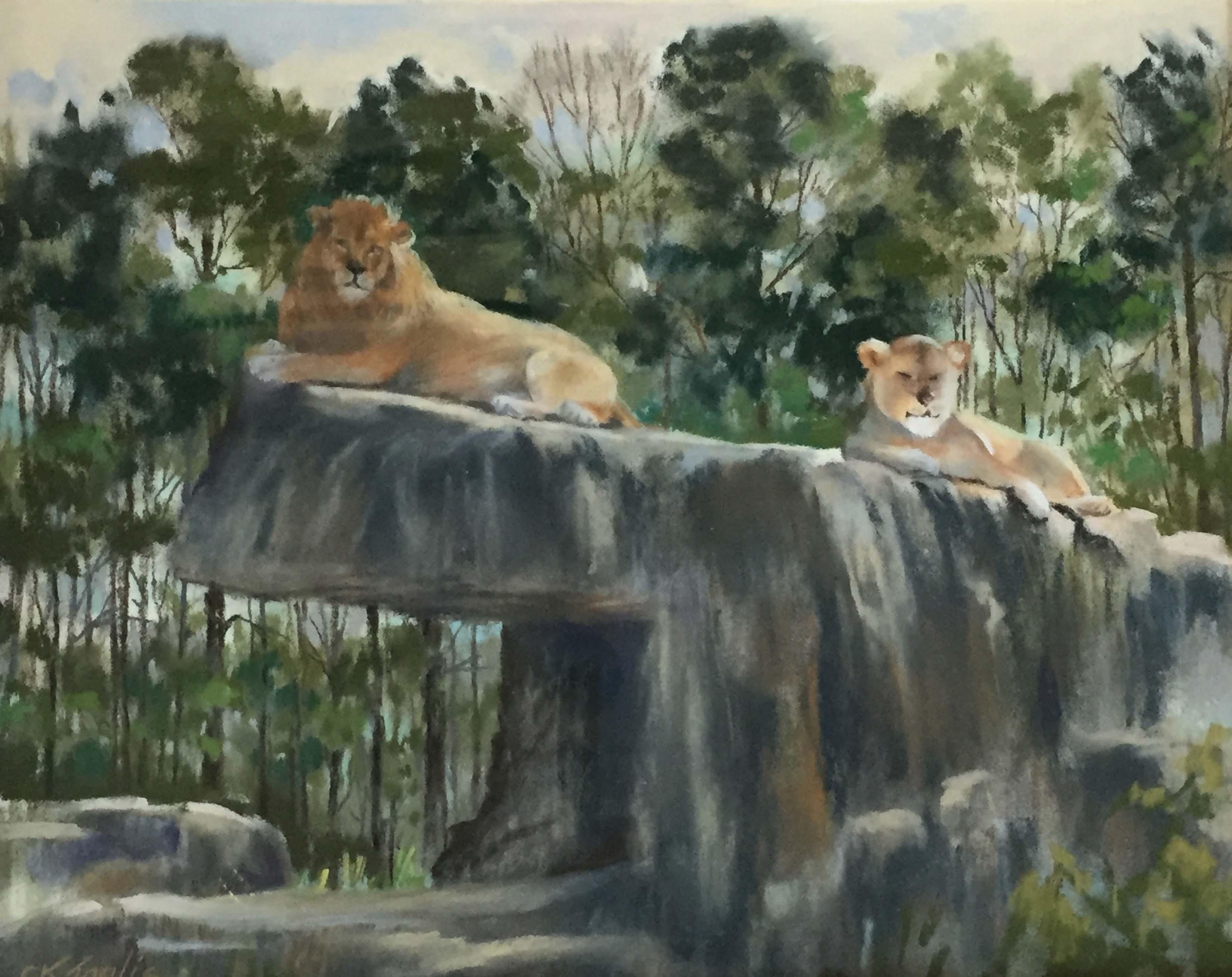 3 Cori Inglis_Lions at Bham   Zoo_235