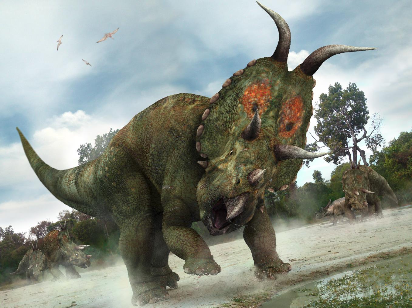 Jon Hughes Diabloceratops