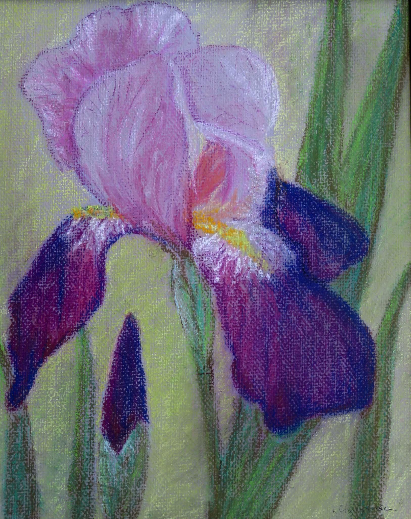 Royal Purple Iris by Libby J   Christensen nfs