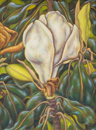 74. Coll.-  Artist George Taylor