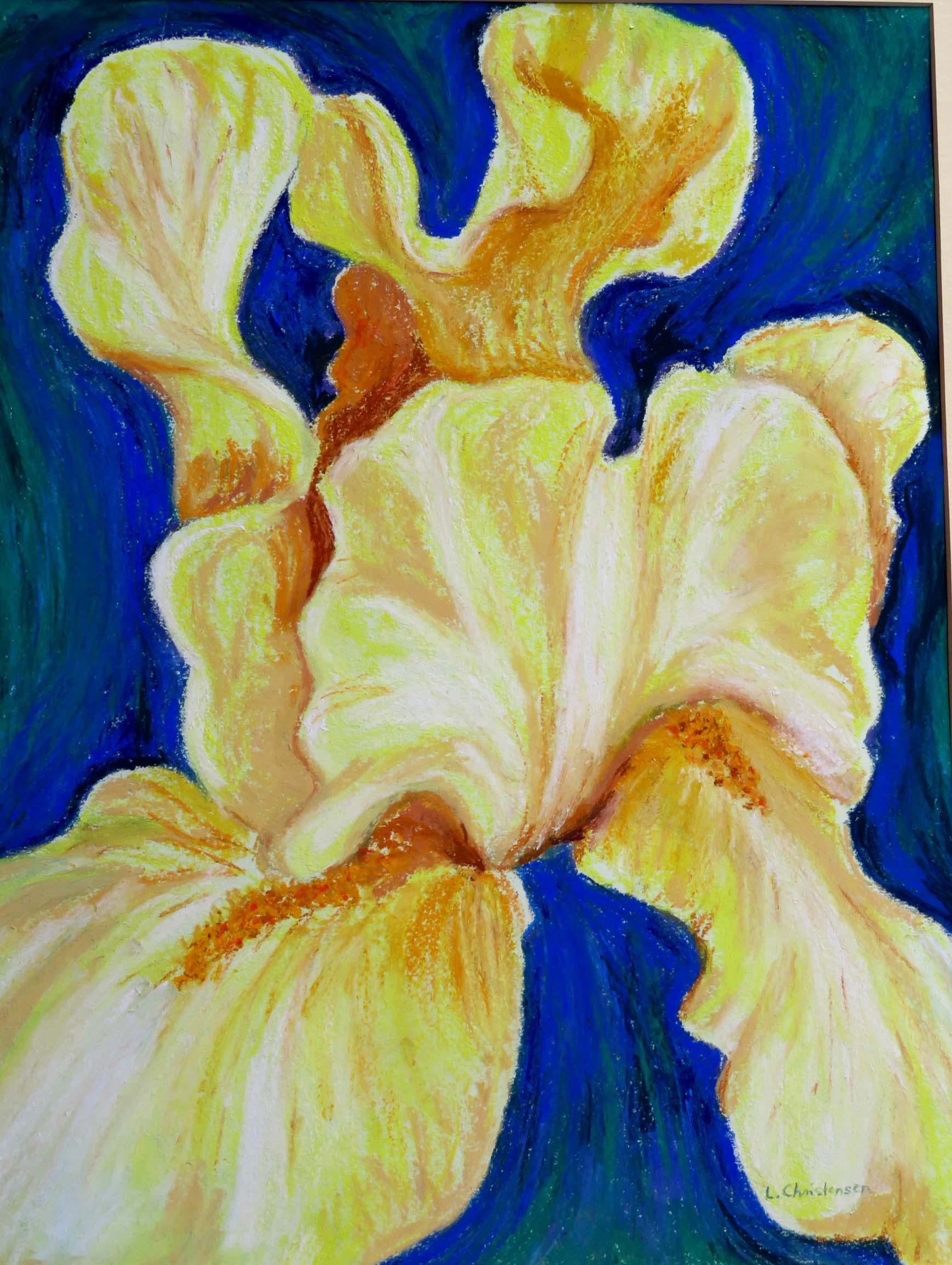 Undulating Butter, Yellow Iris  by   Libby J Christensen nfs