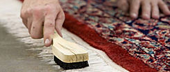 Best area rugs cleaning service