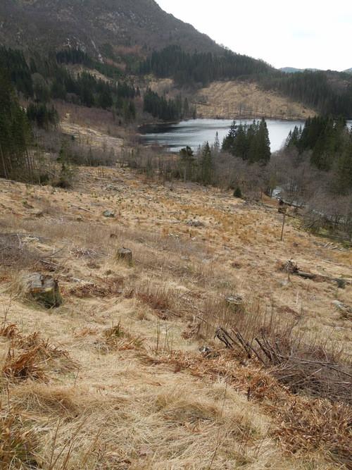 Hardbakka Ruins Project 2013 site pictures