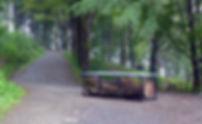 LP1070124.jpg