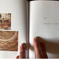 Edges & Fray by Danielle Vogel