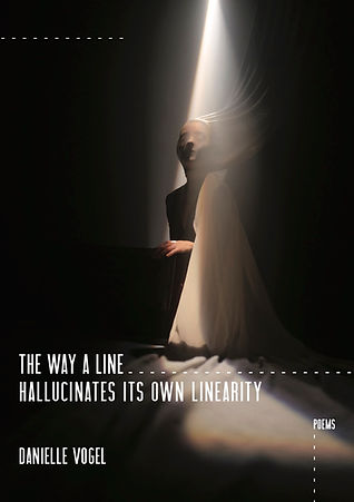 The Way a Line Hallucinates Its Own Linearity by Danielle Vogel
