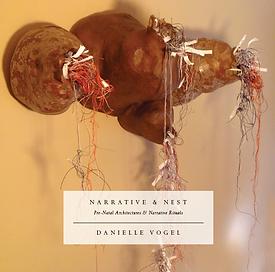 Book Cover of Narrative & Nest, Vogel .p