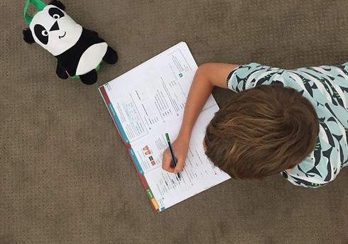 Huiswerk Online Nederlands Onderwijs