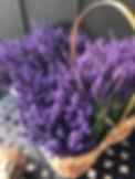 sfm lavender bundles.jpg