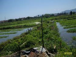 Thailand 2010-0162.JPG