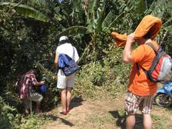 Thailand 2010-0173.JPG